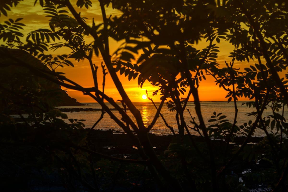 Sonnenuntergang auf der Vogelinsel Runde