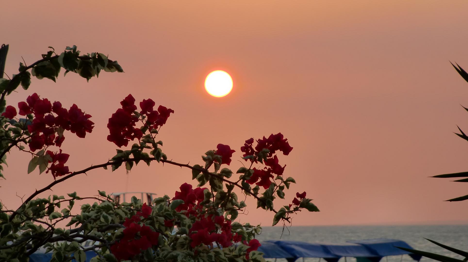 Sonnenuntergang auf Isla de Coche