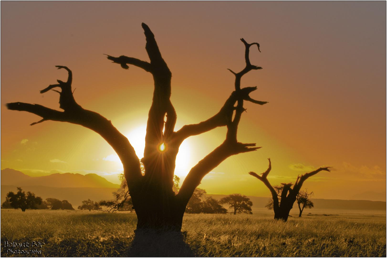 Sonnenuntergang auf Kanaan