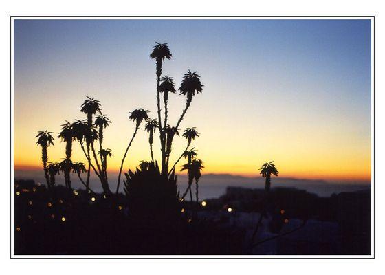 Sonnenuntergang auf Santorini II.