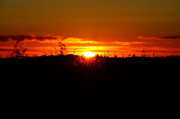 Sonnenuntergang......