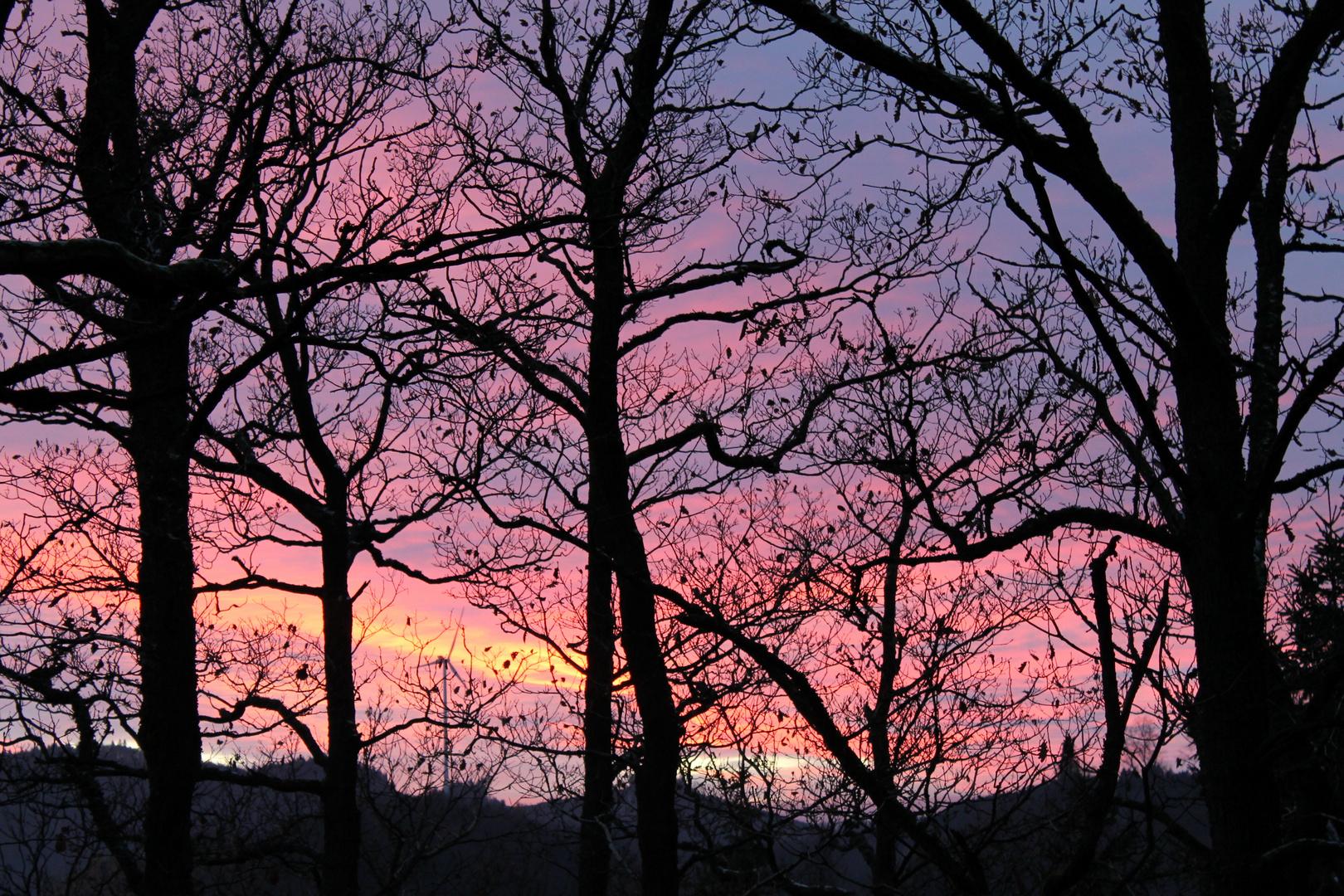 Sonnenuntergang Bad Laasphe 2014-11-27
