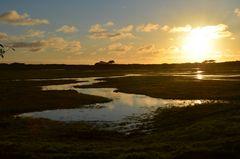 Sonnenuntergang bei den Salzwiesen