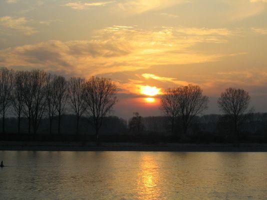 Sonnenuntergang bei Gernsheim am Rhein