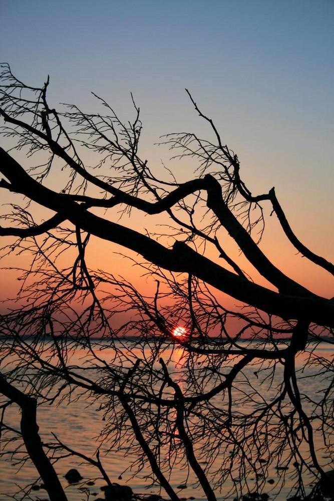 Sonnenuntergang bei Lietzow