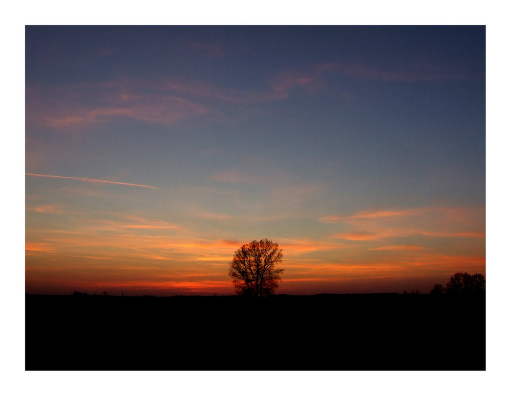 Sonnenuntergang bei Meißen