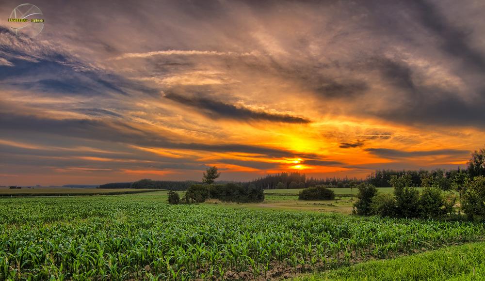 Sonnenuntergang bei Mengen in Oberschwaben