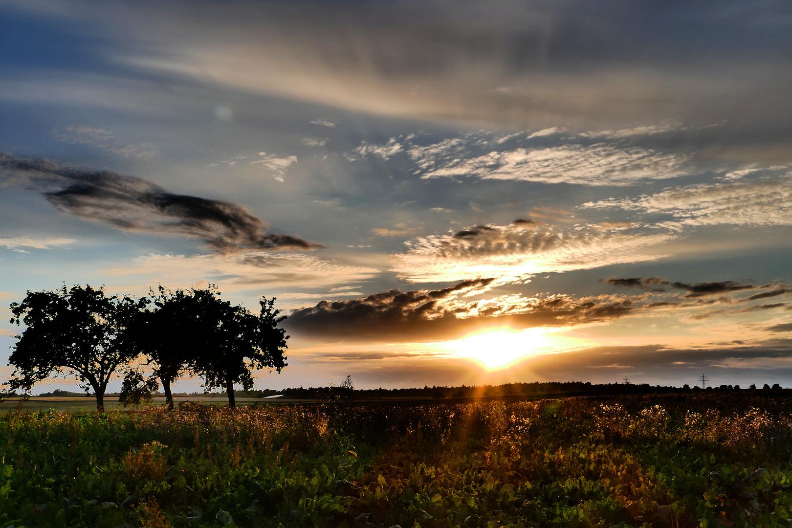 Sonnenuntergang bei Wertheim 2