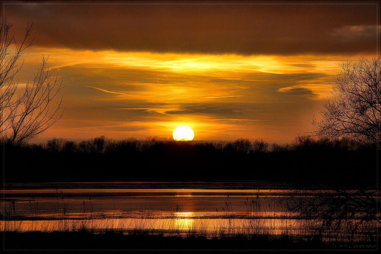 Sonnenuntergang beim Überschwemmungsgebiet Havel / Stremme bei Rathenow