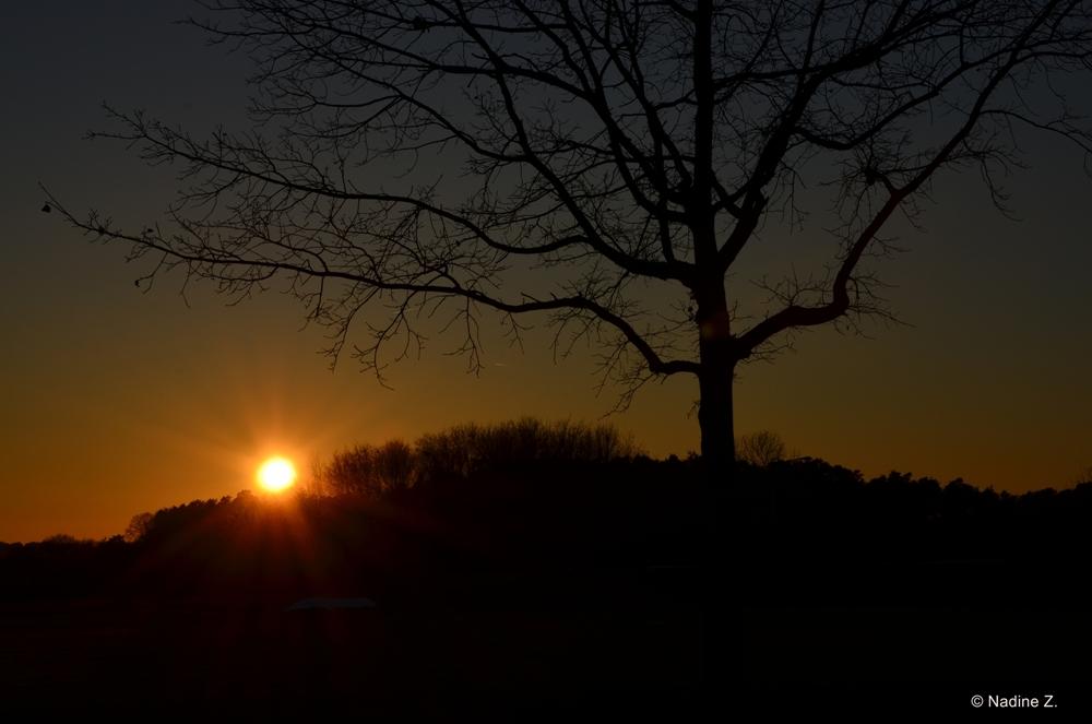Sonnenuntergang *_*