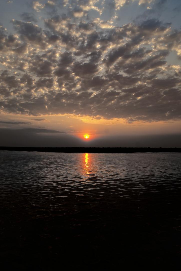 Sonnenuntergang Chobe River, Botswana 3