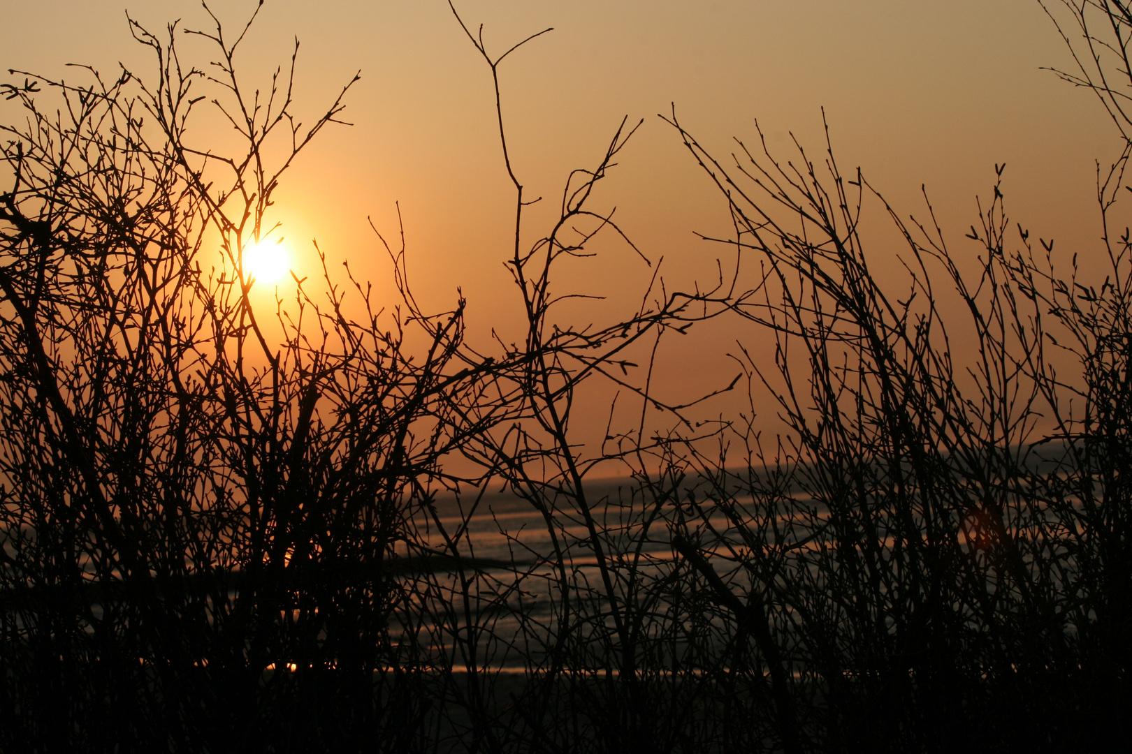 Sonnenuntergang Cuxhafen ( Döse)