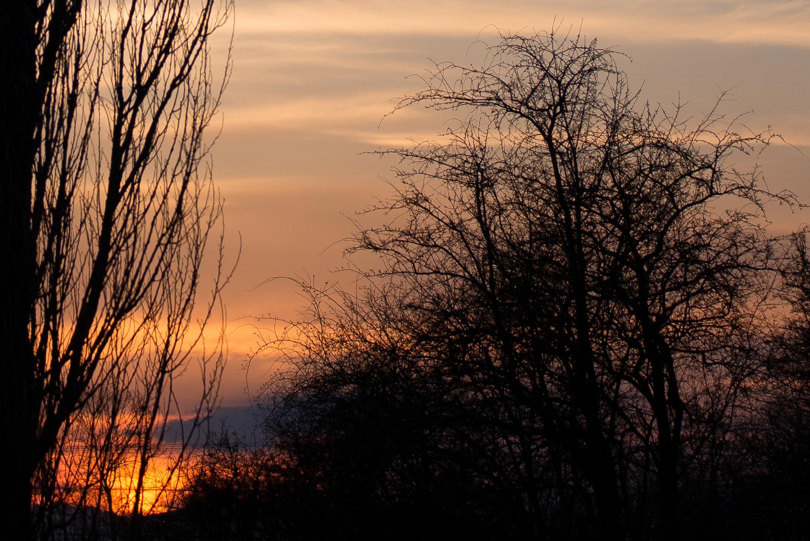 Sonnenuntergang - Detailvergrößerung