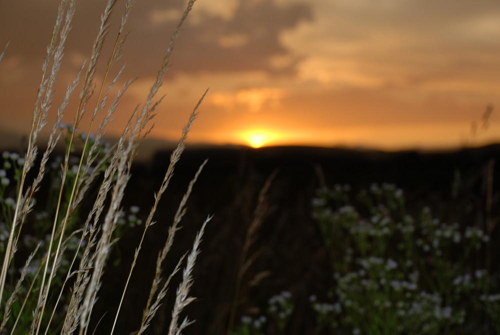 Sonnenuntergang die Hundertste