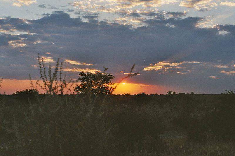 Sonnenuntergang Etosha Namibia