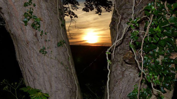 Sonnenuntergang Gelting Mole