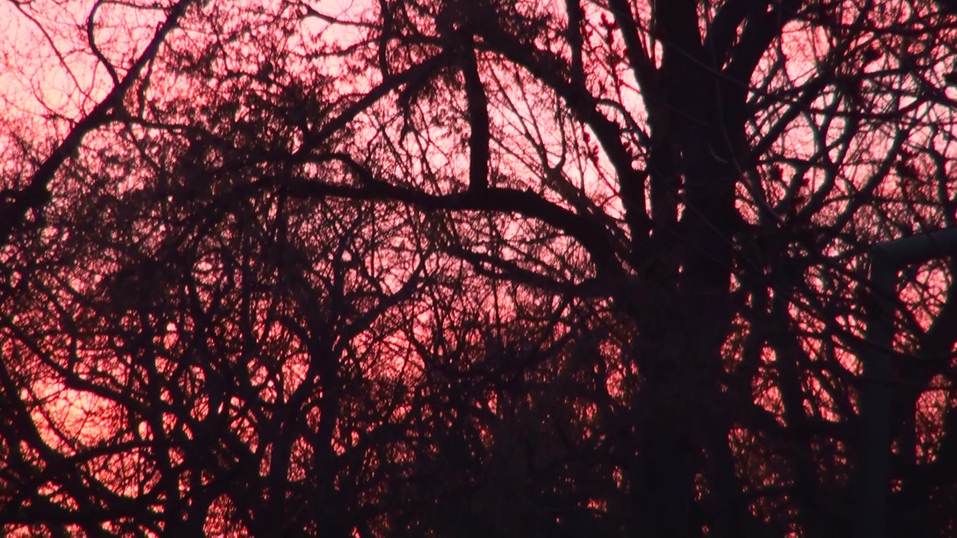 Sonnenuntergang grafisch