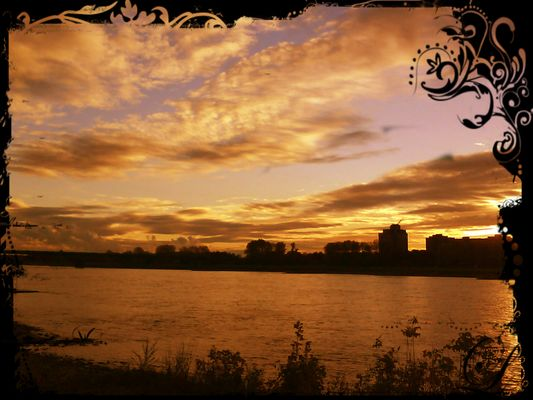 Sonnenuntergang Herbst 2011 / Df. am Rhein