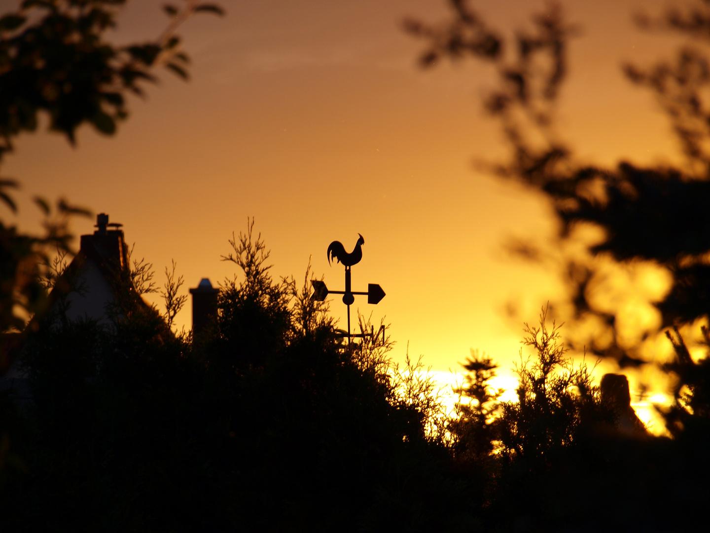 Sonnenuntergang hinter Buchenbühl