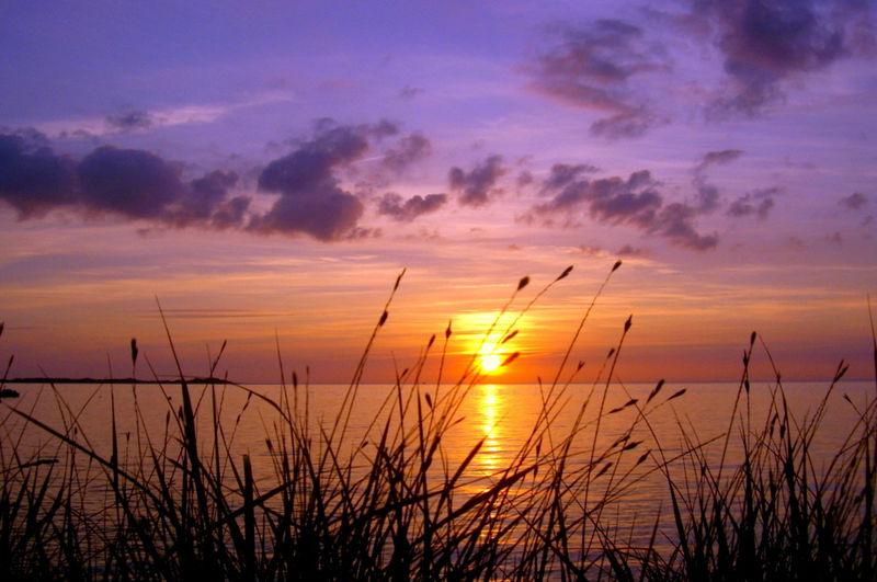 Sonnenuntergang hinter dem Strandhafer