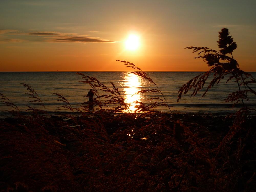 Sonnenuntergang Hundestat Dänemark 30.05.09