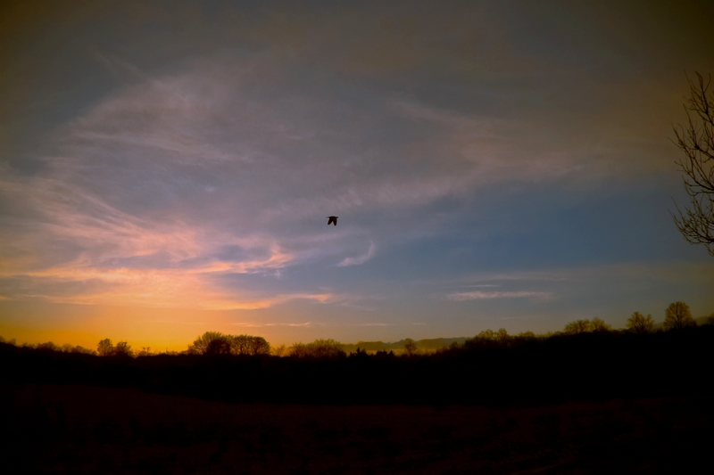 Sonnenuntergang, ich kam fast zu spät