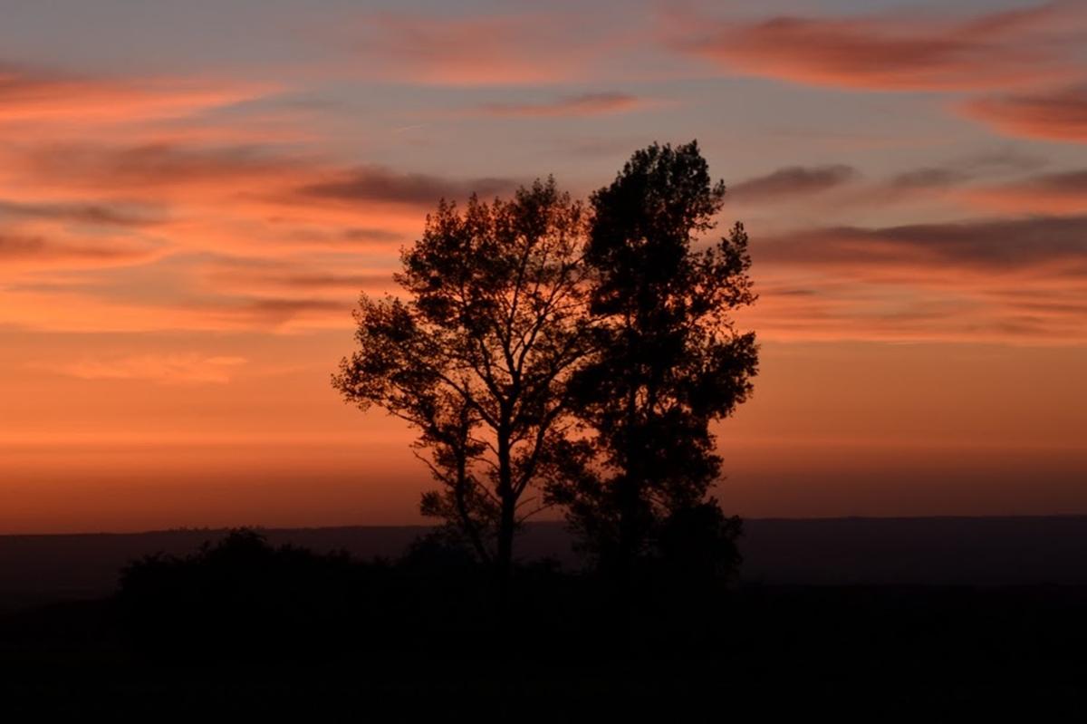 Sonnenuntergang III