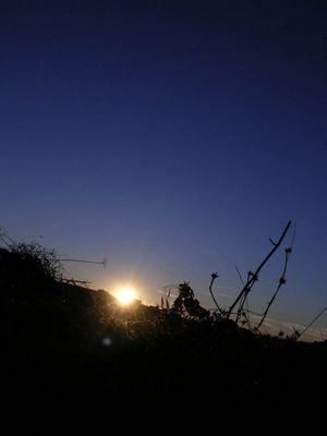 Sonnenuntergang im August 05