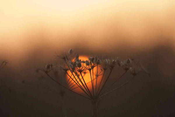 Sonnenuntergang im August