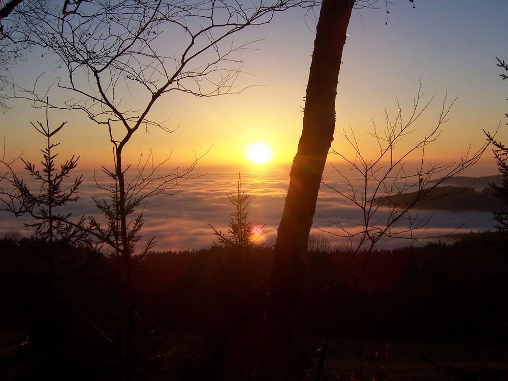 Sonnenuntergang im bayr. Wald