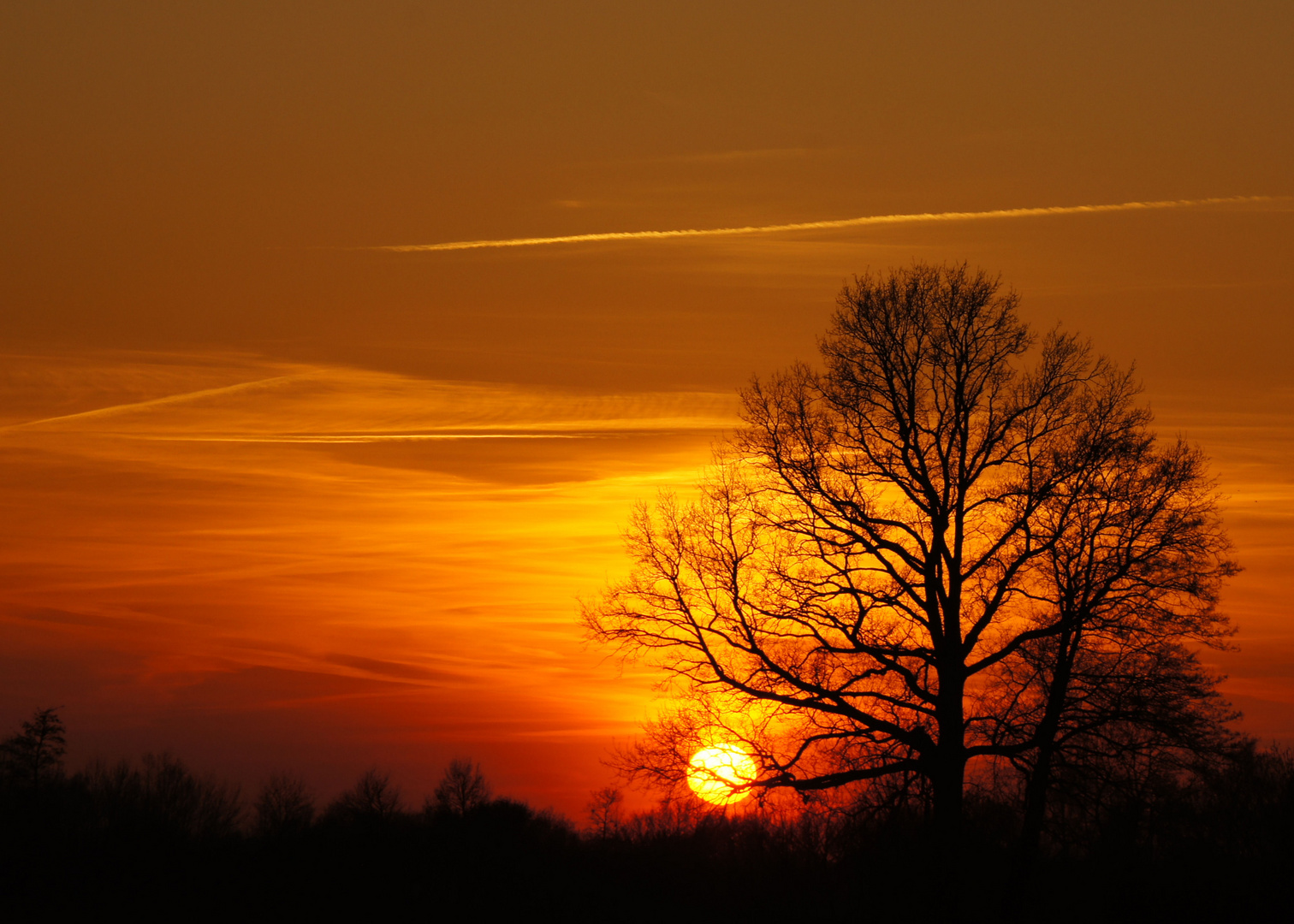 Sonnenuntergang im Emsland (März 2011)