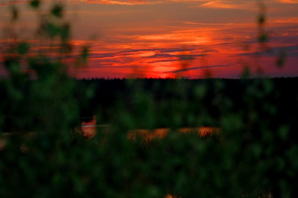 Sonnenuntergang im Fockbeker-Moor