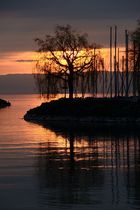 Sonnenuntergang im Hafen von Clarens