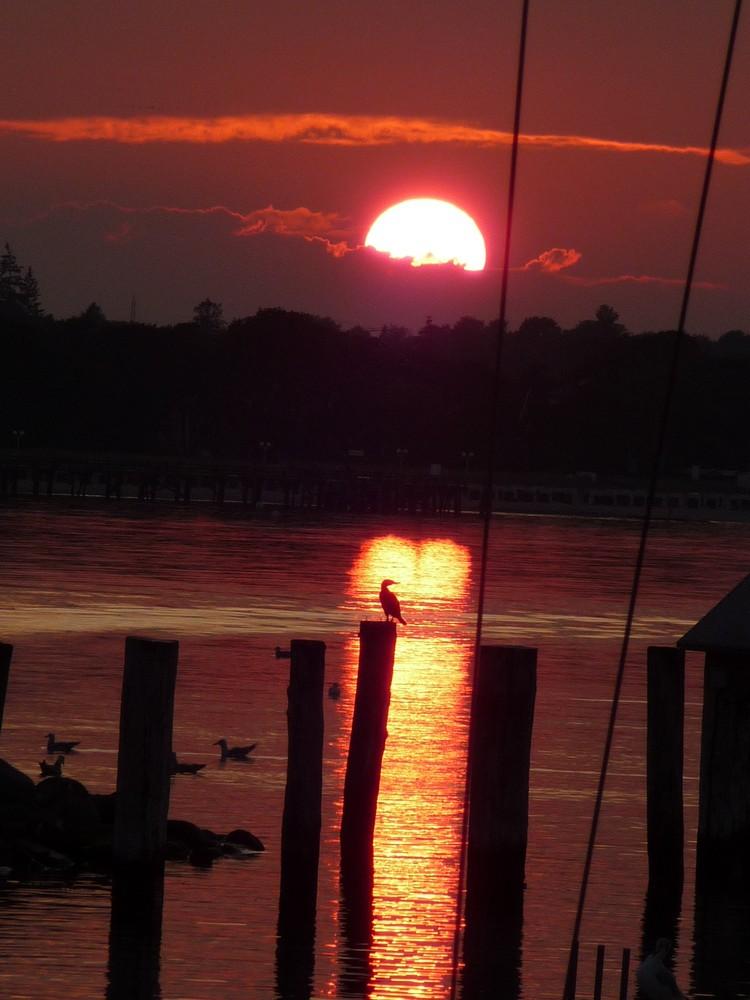 Sonnenuntergang im Hafen von Niendorf