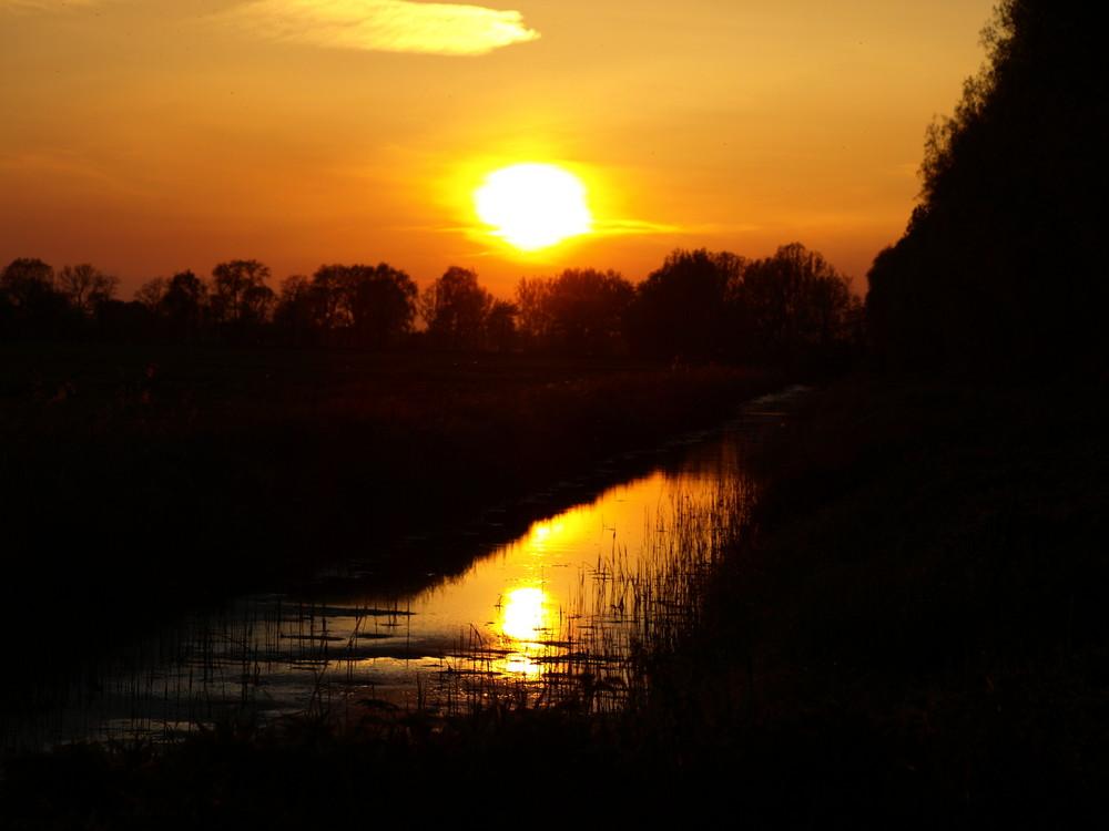 Sonnenuntergang im Herzen der Lewitz 2 (Mecklenburg-Vorpommern)