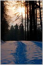 Sonnenuntergang im Hunsrück