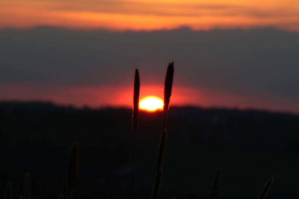 Sonnenuntergang im Mai die 2.