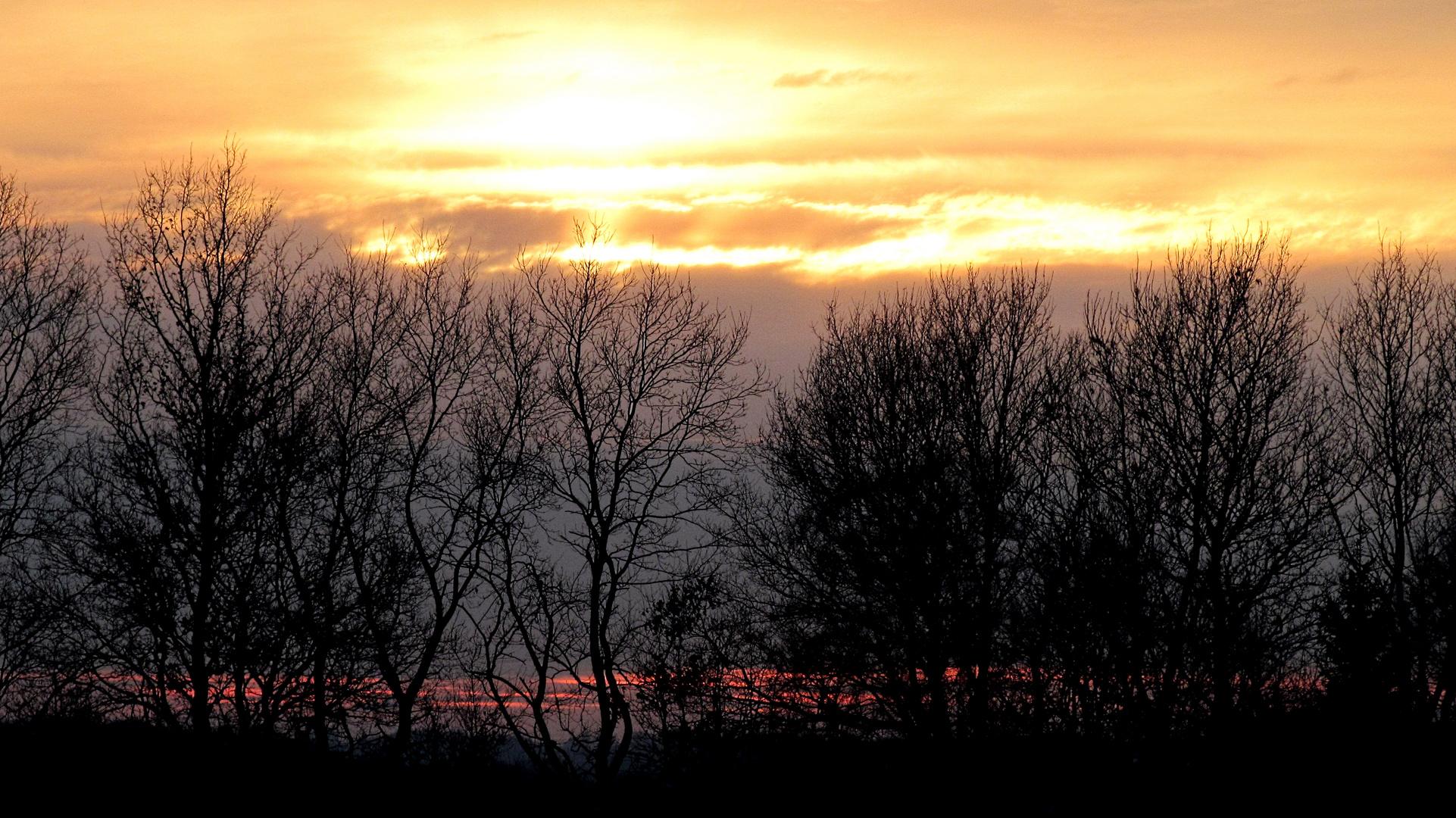 Sonnenuntergang im Moor .................