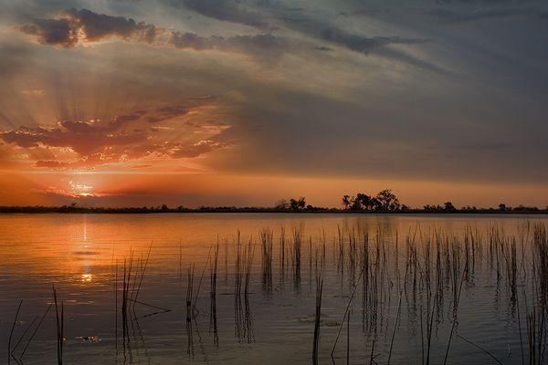 Sonnenuntergang im Moremi NP