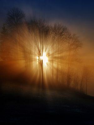 Sonnenuntergang im Nebel