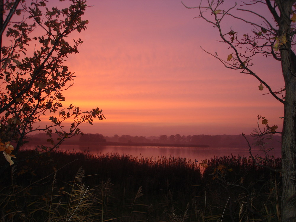 Sonnenuntergang im November2008 auf Rügen