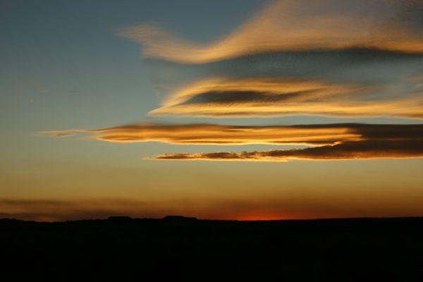 Sonnenuntergang im Petriefied Forrest