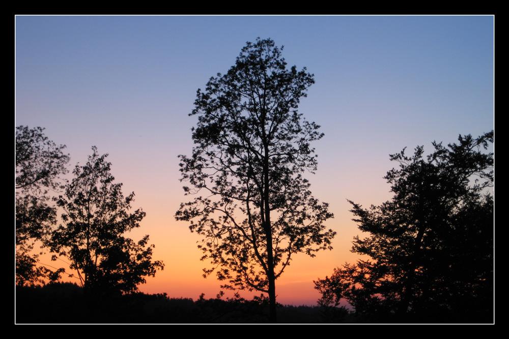 Sonnenuntergang im Sauerland (6)