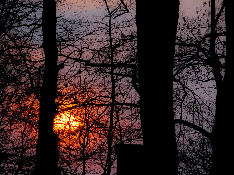 Sonnenuntergang im Scheunenvietel Steinhude am Meer