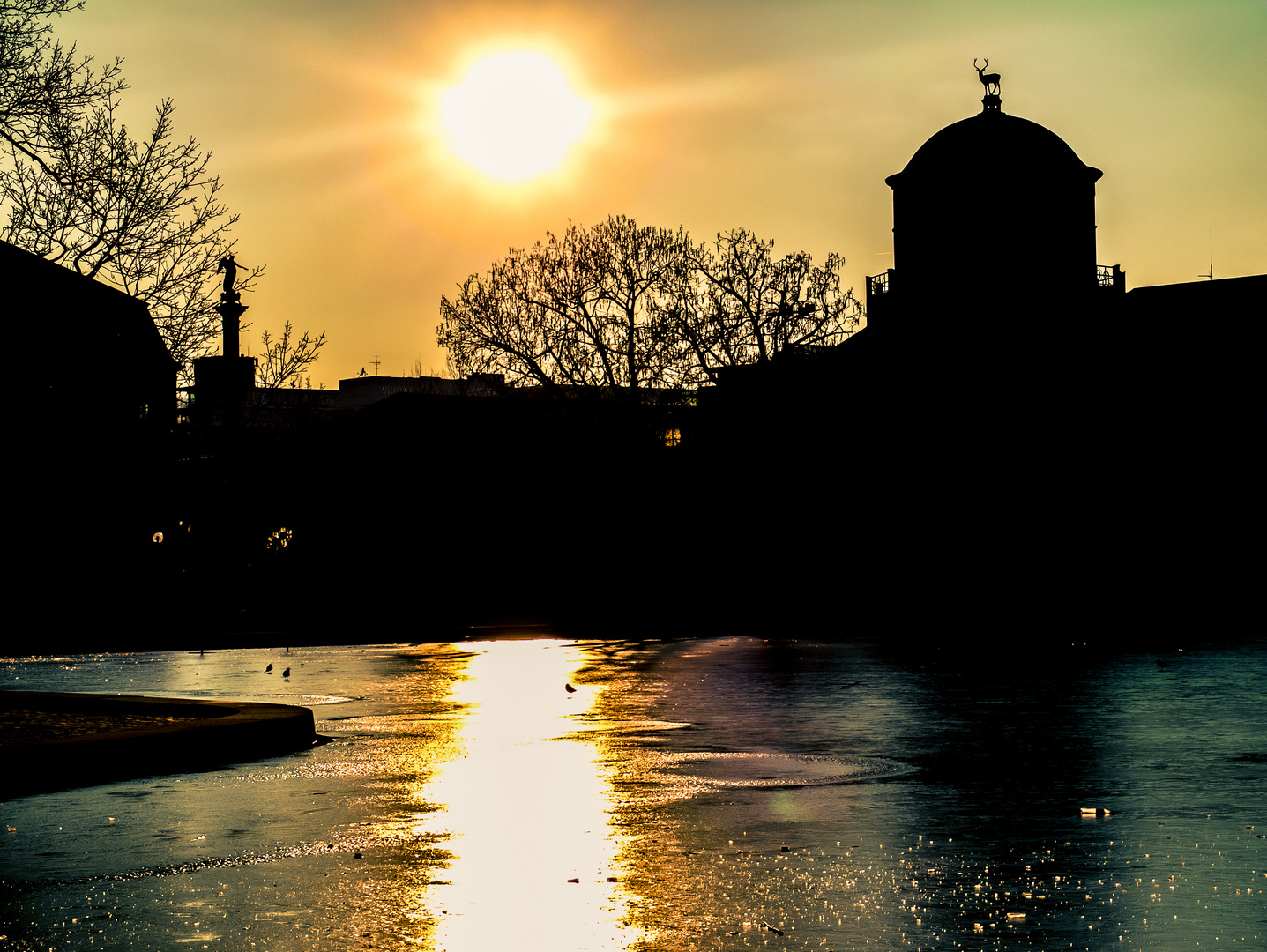 Sonnenuntergang im Schloßpark Stuttgart