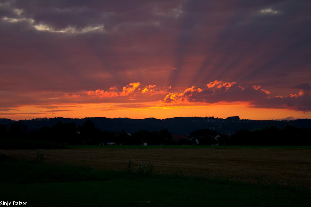 Sonnenuntergang im Schussental