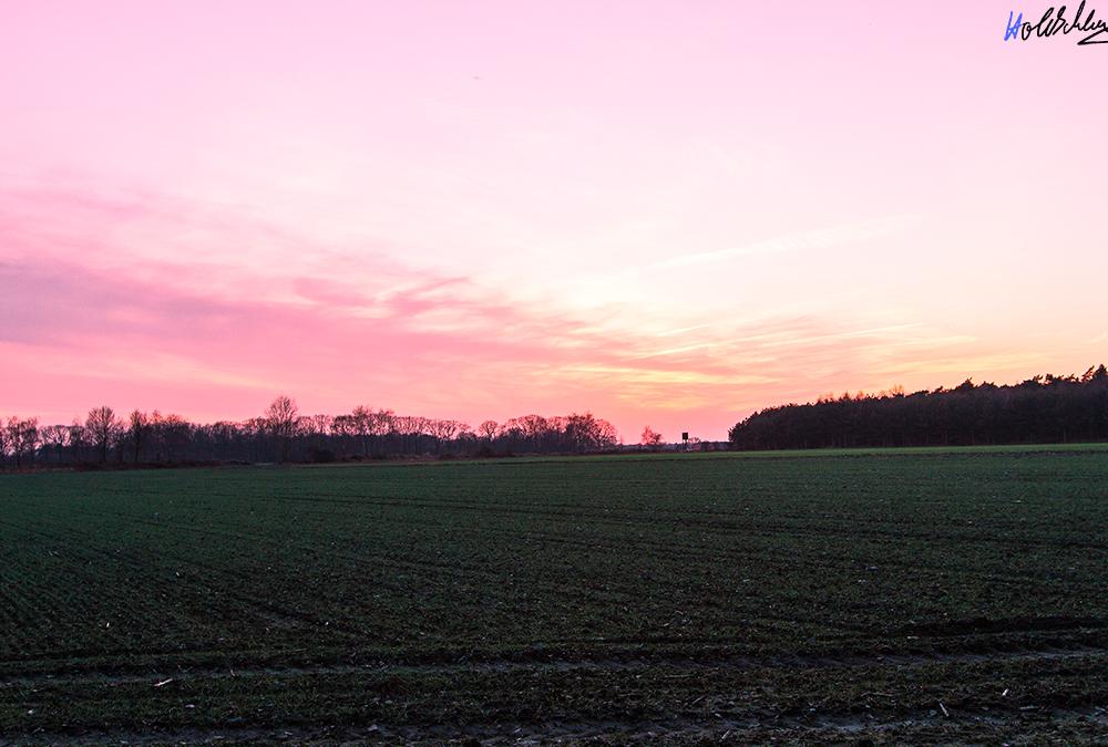 Sonnenuntergang im späten Winter