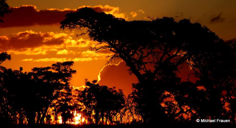 Sonnenuntergang im Welgevonden Game Reserve