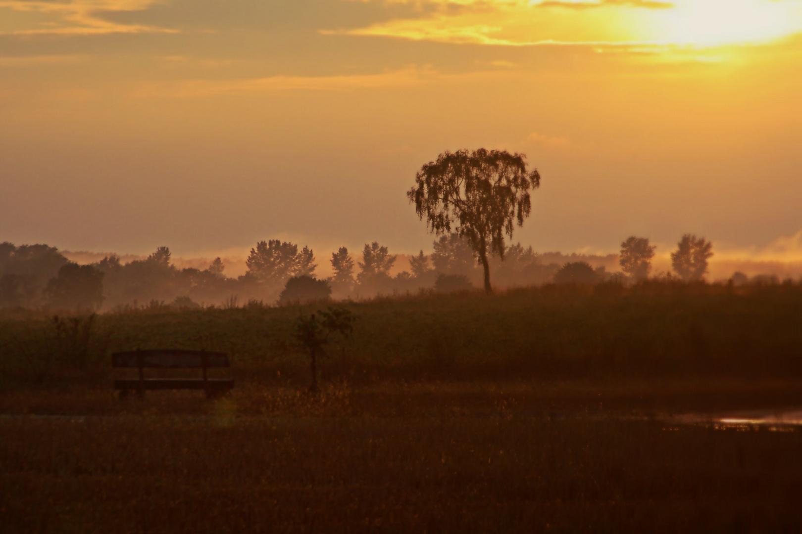 Sonnenuntergang im Wendland