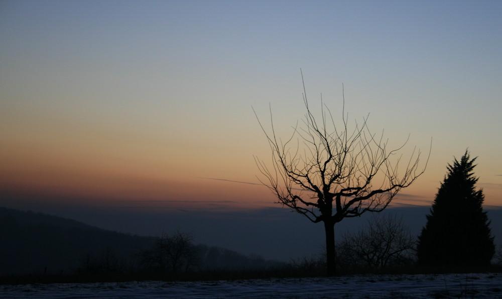Sonnenuntergang im Winter...